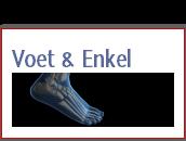 voet-en-enkel
